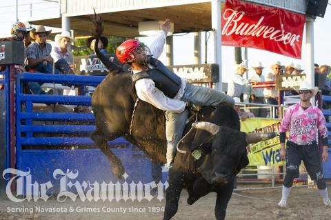 The crowd enjoyed every moment of the acrobatic dismounts provide by the powerful stock of bulls as they sent cowboys soaring to the ground Saturday, June 12, at the annual Grimes County Fair Association Bull Buck Out. Examiner photos by Matthew Ybarra