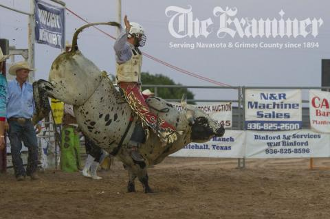 The 2021 Grimes County Fair had a record-breaking year setting new highs in many categories including attendance. There was something for everyone including top-notch concerts, exciting rodeo action, record-breaking sales and an all-around great time! Don't miss the special 2021 Grimes County Fair Special Section in the June 30 edition of The Examiner. Examiner photos by Matthew Ybarra and Connie Clements